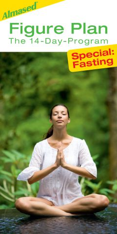 Figure Plan Fasting cover
