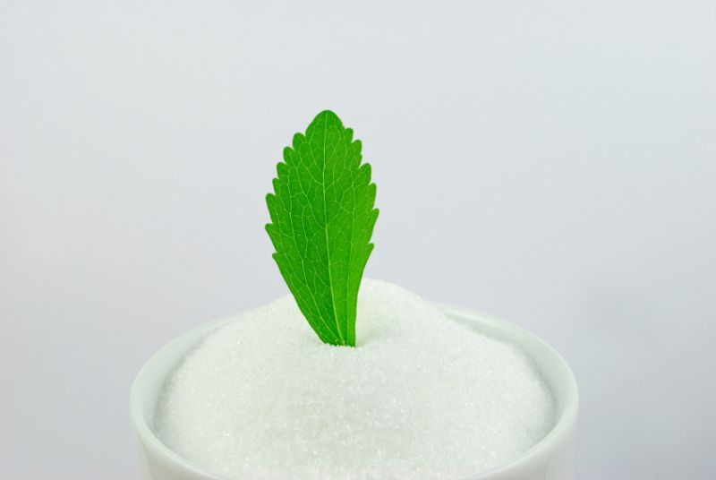 an introduction to the safer sugar stevia